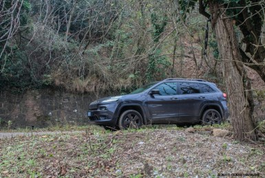 Jeep Cherokee: The Wrong Front Cover