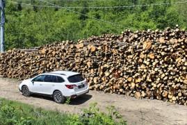Everyday's Subaru